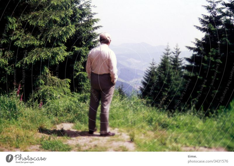 View of the country attention Stand Forest tree Meadow farsightedness on one's own Lonely Man Pants Shirt vacation hiking break mountain mountains Landscape