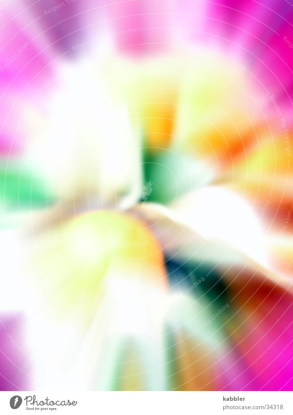 blaze of colour Multicoloured Violet Yellow Green Middle Whirlpool Soft Macro (Extreme close-up) Close-up Movement Reaction