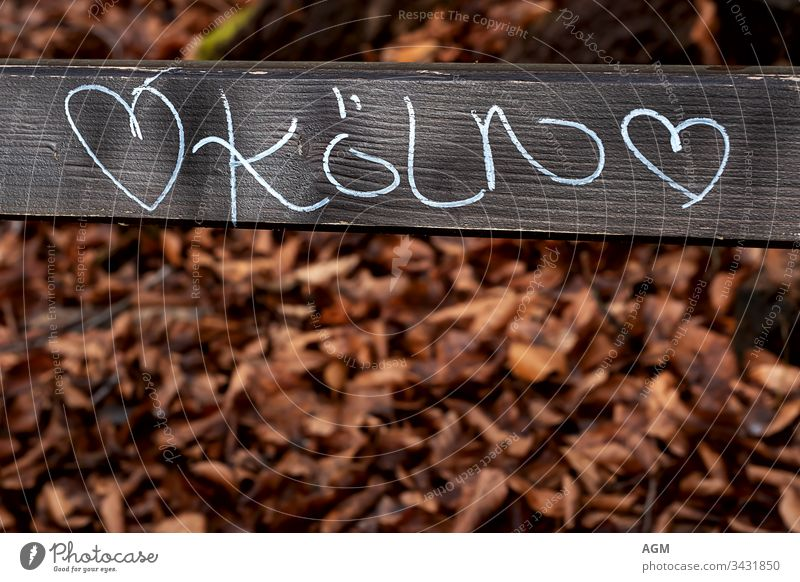 I love Cologne Text Abstract Autumn leaves background Bench Board burnt orange Carnival Chalk drawings City Copy Space creatively Destination Dirty Font Germany