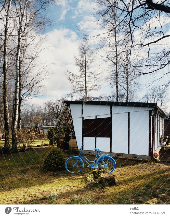 blue bicycle bungalow Holiday Village Camping site permanent campers free time out Bicycle trees Nature relaxation Relaxation Deserted Colour photo
