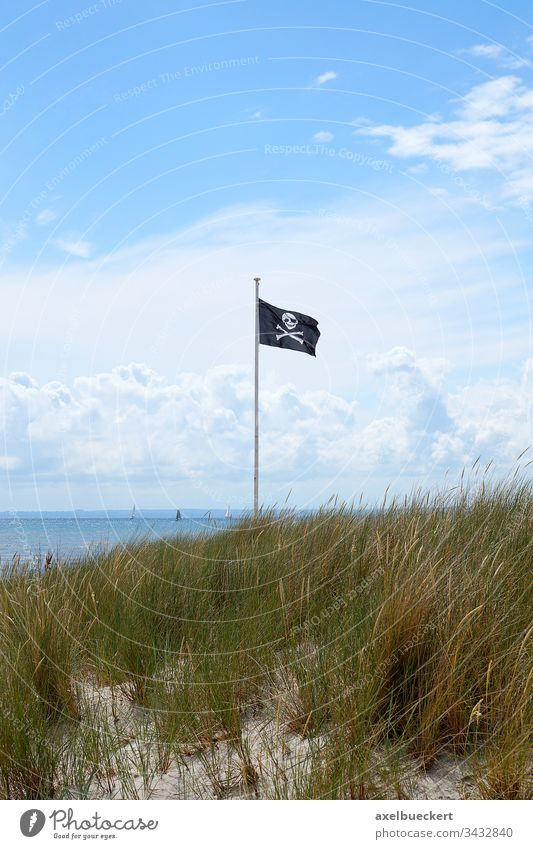 Pirate flag pirate flag skull and crossbones Flag Baltic Sea flagpole Flagpole Black Beach Ocean Summer Water symbol Blow Wind Anarchy piracy Sky Clouds Grass