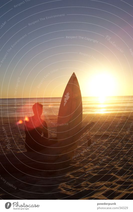 Sun Ocean Beach Surfing Surfer