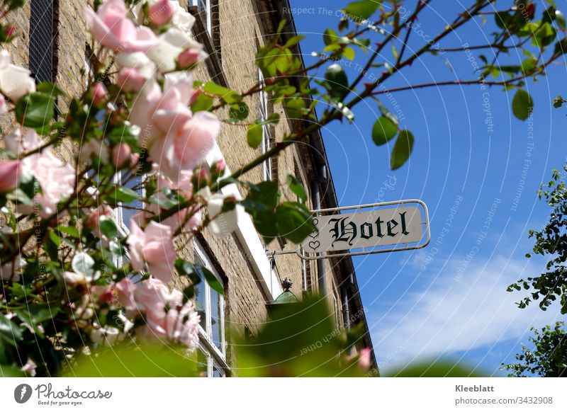Romantic hotel, rosebush in the foreground HOTEL lettering romantic hotel pink roses old building Wellness Romance Vacation & Travel Nostalgia Hotel built Sky