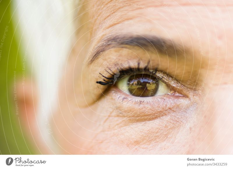Wrinkled eye of beautiful lady eyelashes adult age brown care closeup detail elderly expression eyebrow face look macro optic senior skin vision white woman