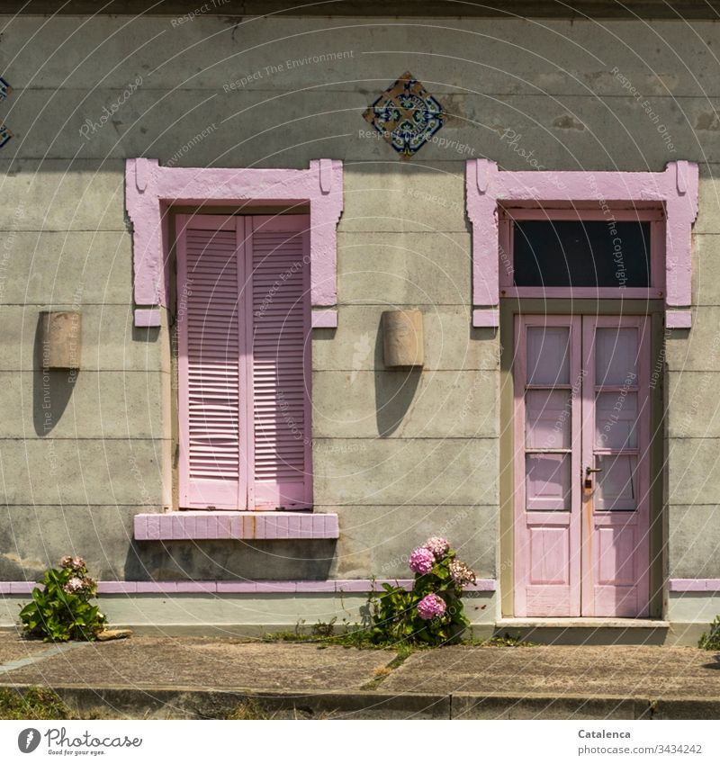 The pink painted shutters and front door freshen up the grey facade. Two pink hydrangeas take care of themselves Apartment Building