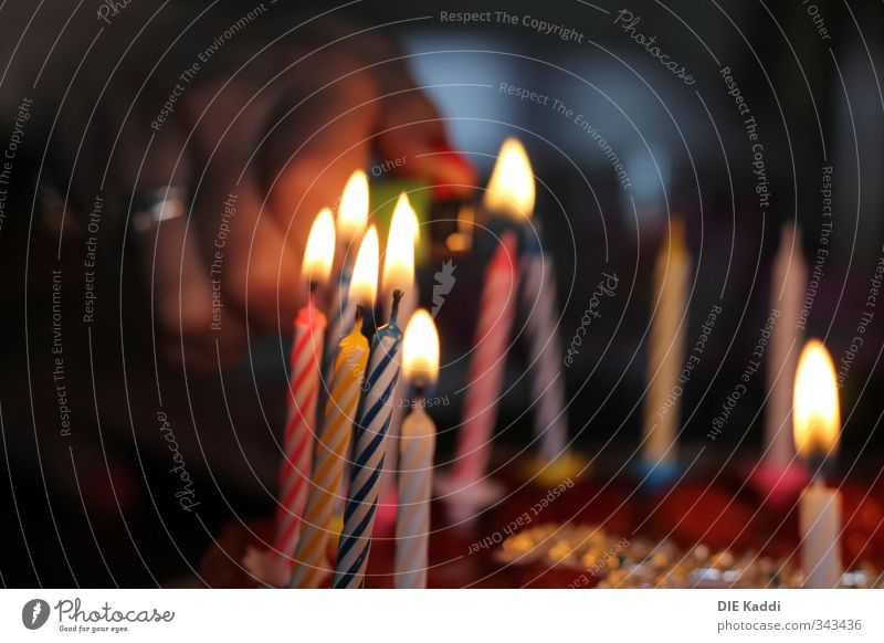 Beautiful Hand Joy Emotions Happy Feasts & Celebrations Eating Party Together Food Glittering Birthday Illuminate Esthetic Blaze Candle