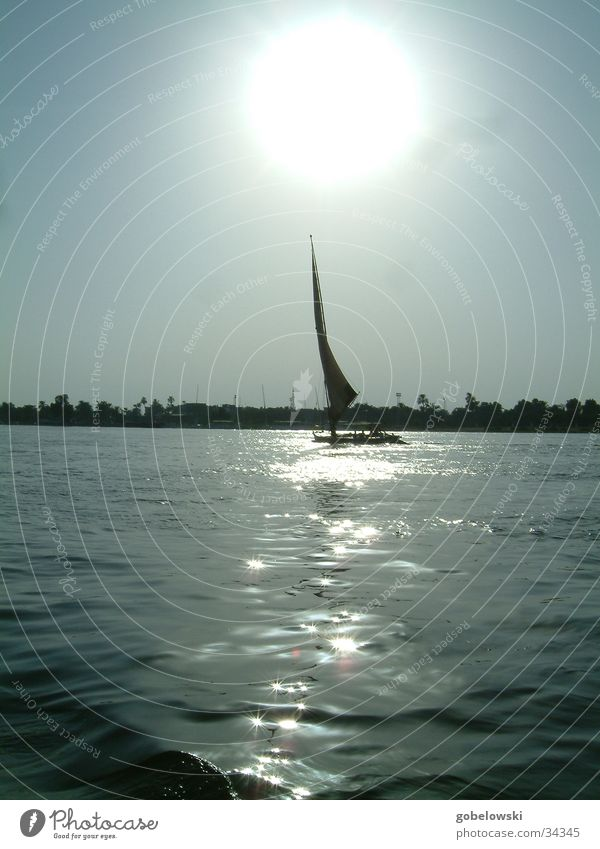 Impressions of the Nile Sailboat Sunset Navigation Water River Evening