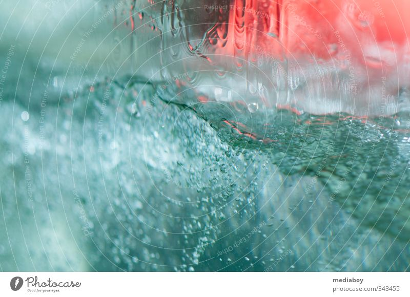 Water Swimming & Bathing Trip Summer Waves Fluid Colour photo Exterior shot Detail Underwater photo Day