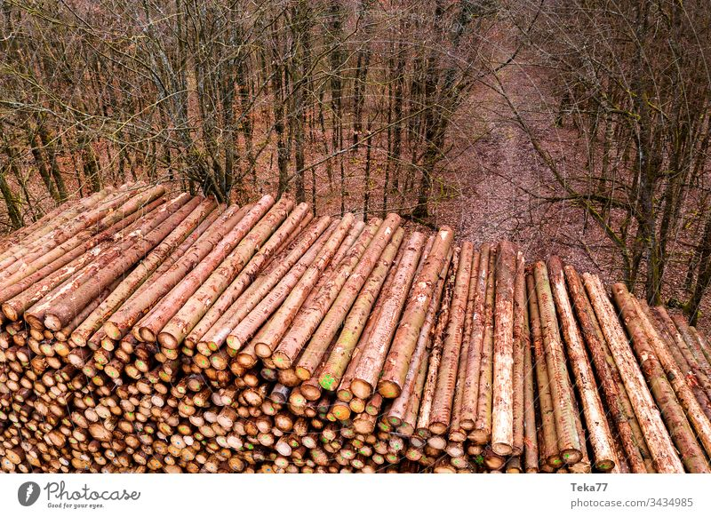 wooden log storage outdoors from above logs branch wood storage forest tree trees tree stem stems texture background brown orange wood pile wooden pile
