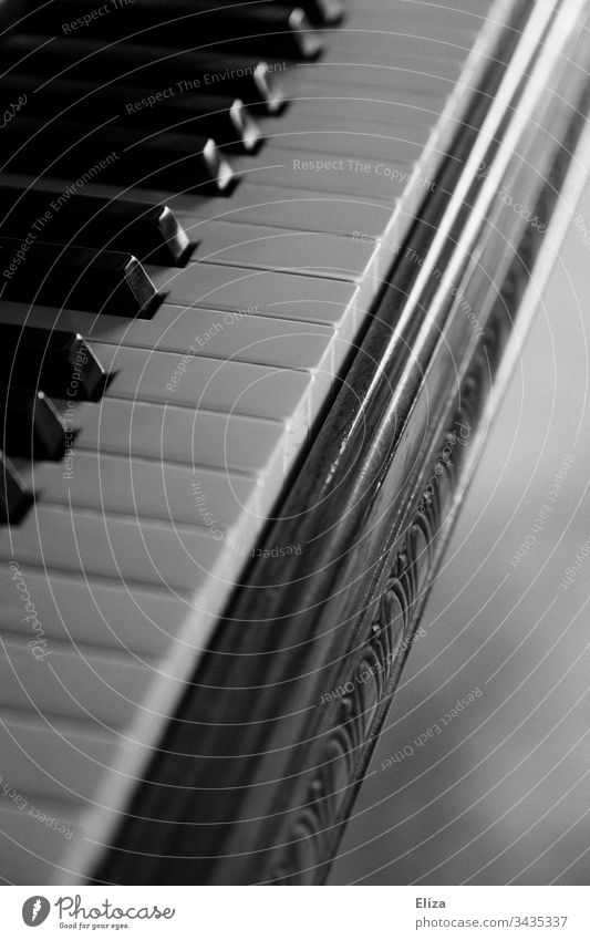 Close-up of a piano with its keys in black and white Piano keyboard Keyboard Concert Copy Space right Musician Interior shot Classical Play piano