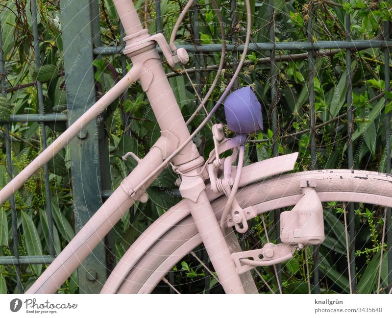 Detail of a pink painted ladies bicycle with purple lamp Bicycle Pink dynamo Wheel rim Spokes Cable Fence Hedge connected Old Tire Means of transport