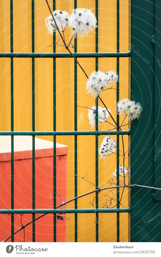 Green grid, branch with white pimples in front of abstract background in yellow and orange Grating Fence Twig White Shriveled Pattern rectangular