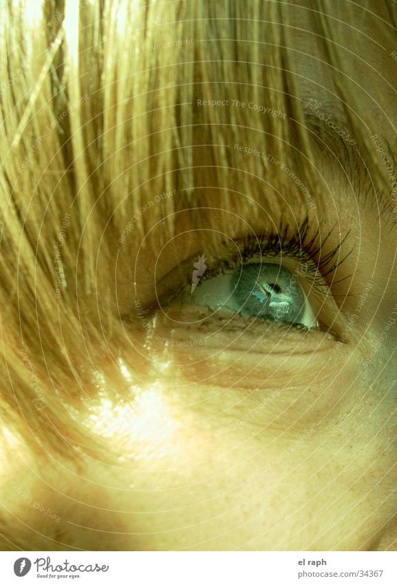 Woman Eyes Far-off places Hair and hairstyles Future Longing Eyelash