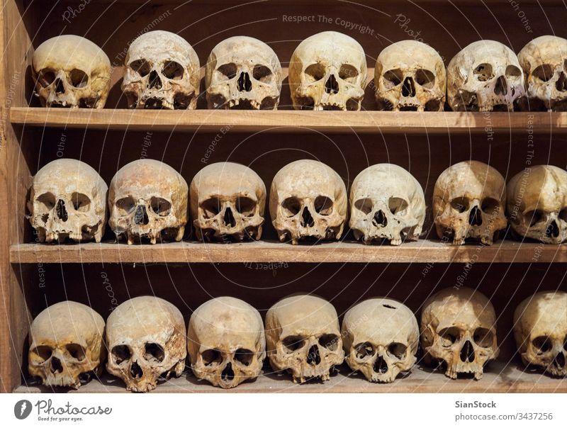 Human skulls in the Monastery of Great Meteoro at Meteora, Greece ossuary church meteora greece skeleton human interior europe bone religion catholic christian