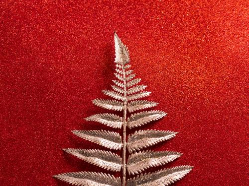 Glitter shiny red background with golden branch glitter christmas silver tropical plant winter cold snow classic abstract festive new year metallic surface