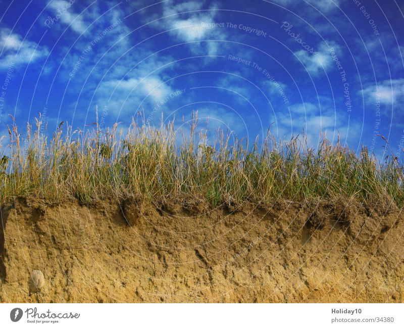 Clouds Grass Sand Coast Background picture Dusk Blue sky