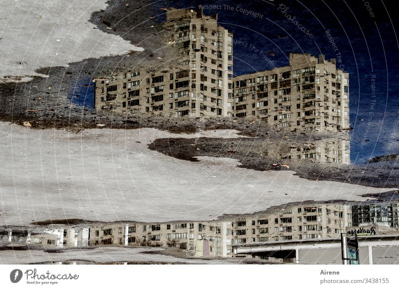 climate change | sinking city Facade Reflection puddle mirroring Puddle Toronto Canada Asphalt Window Gloomy Wet Dark Concrete Office building Building Water