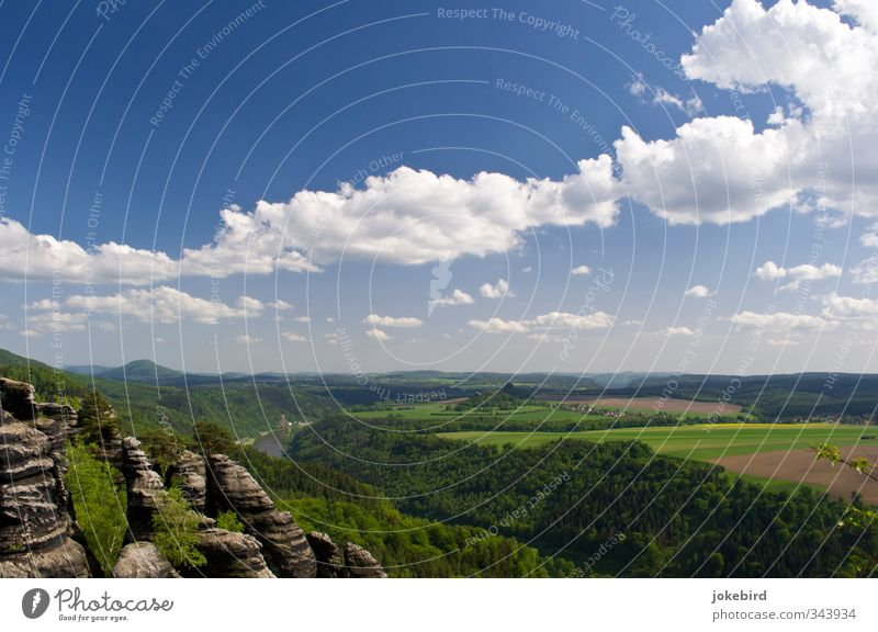 Saxon Switzerland Landscape Sky Clouds Summer Field Forest Rock River Elbe Mixed forest Table mountain Highlands Canola field Sandstone Elbsandstone mountains