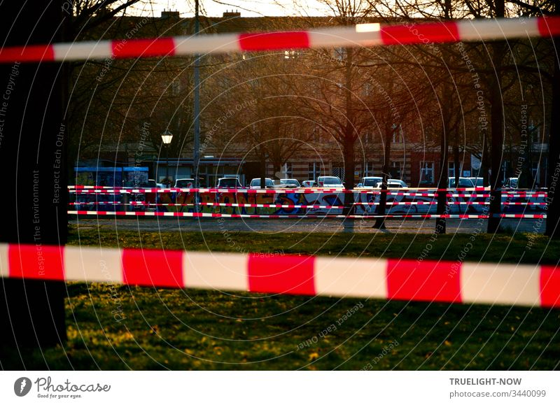 Corona Thoughts | The evening sun illuminates a green area with trees and a parking lot in front of a row of houses in the background, which is closed off by a red and white fluttering band