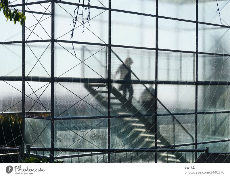 flophouse Lookout tower Glass through glass Translucent Silhouette Sharp-edged Stairs descend Shadow Sunlight Abstract