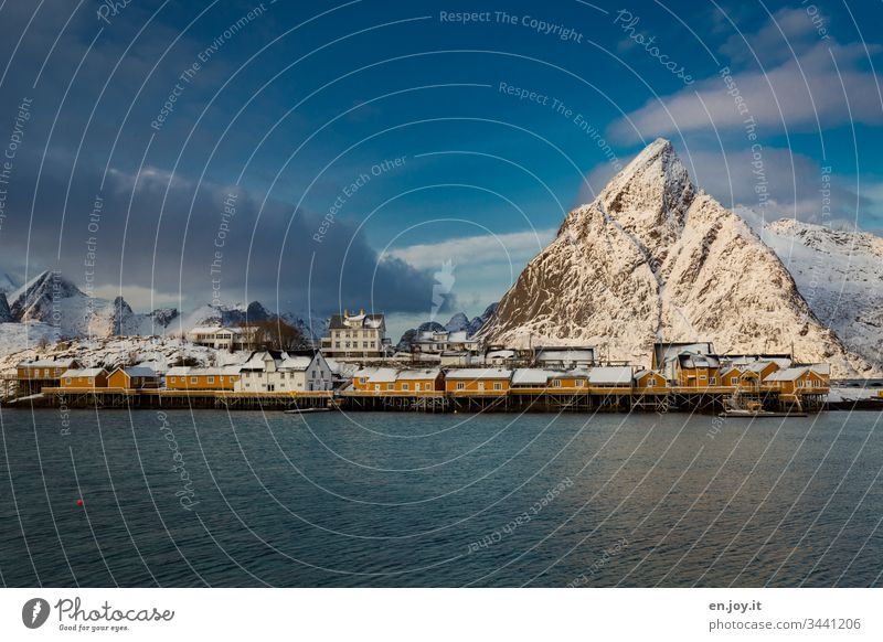 Small fishing village on the fjord in front of snowy mountains at sunset Turquoise Blue Panorama (View) Island View of the city Sakrisøy Wide angle stilt house