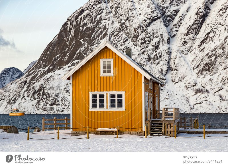 """Small yellow house by the fjord in front of snow-covered mountains sacrisoy Lofoten,"""" Lofoten Islands Fence Yellow Travel photography Detached house Idyll"""