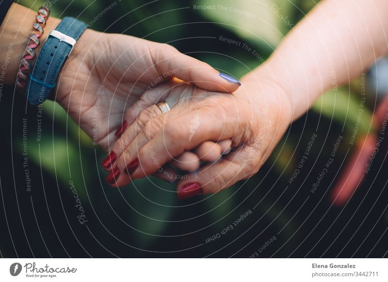 Unrecognizable grandmother and her granddaughter holding hand with love. Grandparents protection concept. concepts grandparents holding hands women togetherness