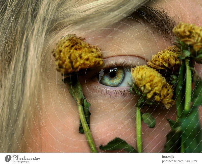 Eyewitness of the past see sehkraft Eyes green Yellow yellow-green yellow green withered Dry Dried flower Dried flowers green eyes Pupil iris Eye colour