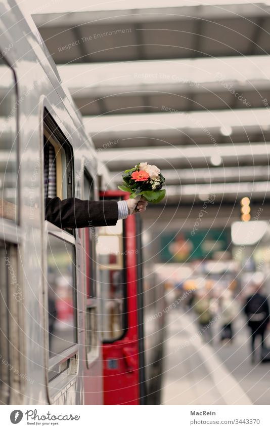 Arrival train station Train station Platform Welcome Bouquet flowers Receive Collect arm received Central station voyage Transport astonished Surprise