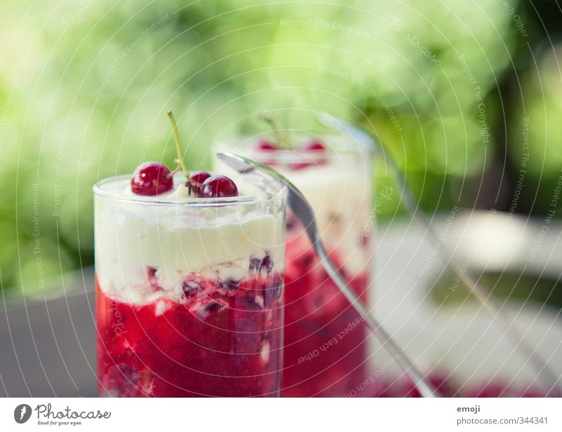 summer Fruit Dessert Ice cream Candy Nutrition Glass Spoon Delicious Sour Sweet Redcurrant Cream Summery Colour photo Exterior shot Close-up Deserted Day