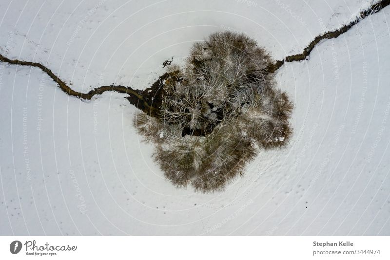 Aerial perspective at a single tree and a crossing little river in a winter top view. snow one creek alone copy space drone calm no person background abstract