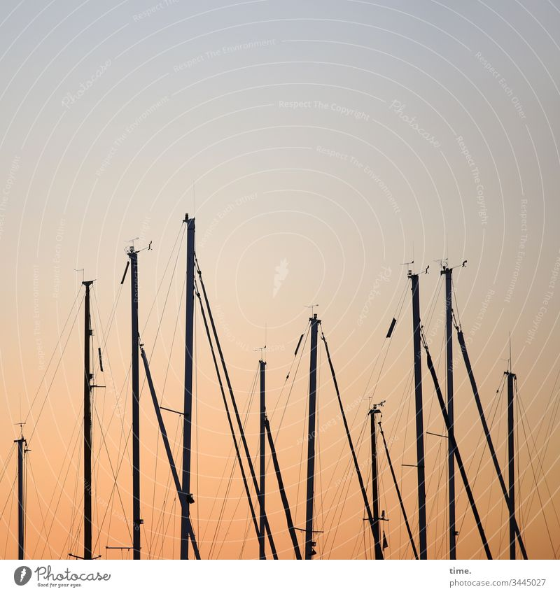 evening entertainment Metal lines Pole Tall technique Room Sky Inspiration Rope ship Sailing ship Maritime Opposite relation ropes Dew gap Approach