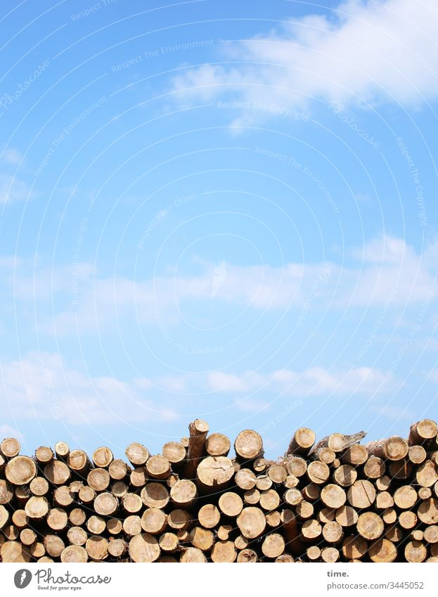 winter stock Transport Sky Clouds Beautiful weather wide Sunlight off Summer tranquillity Serene Wood Stack of wood stacked wood rent Shadow kiegen in common