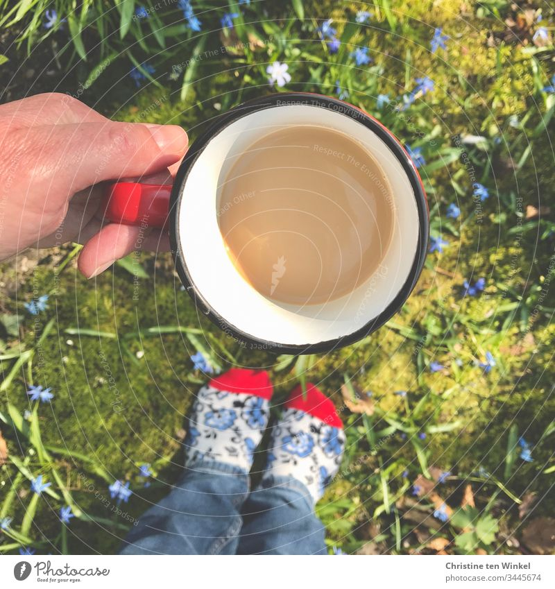 hand holding coffee cup, flowerbed with blue flowers, colorful socks, bird's eye view Flowerbed Coffee cup Coffee mug Mug Hand Nature Coffee break Red Blue