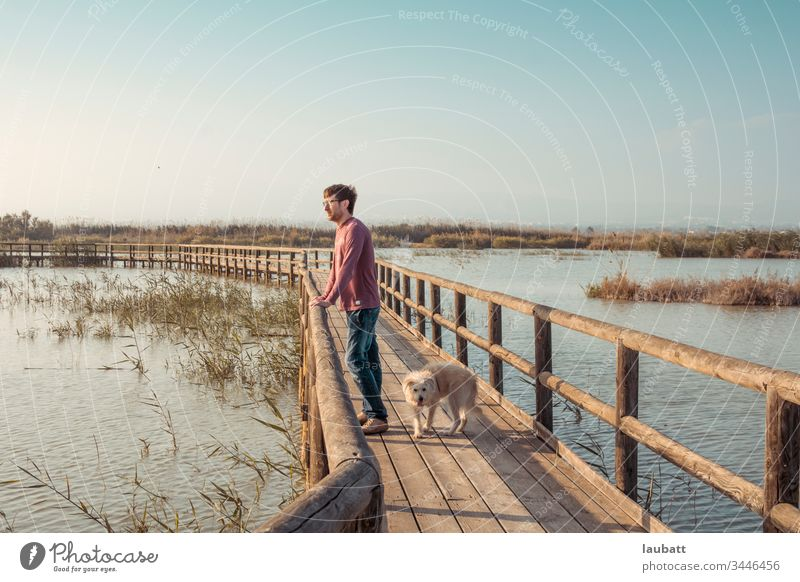 Man and dog looking to the horizon in a natural environment of lagoon and pier - Weekend sunset with puppy Lagoon Nature reserve nature landscape Puppies Dog