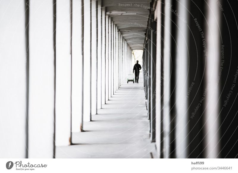 Man in the arcade tunnel Architecture Symmetry Arcade arcades Elegant Facade Wall (building) Line Structures and shapes Human being Column Deep depth of field