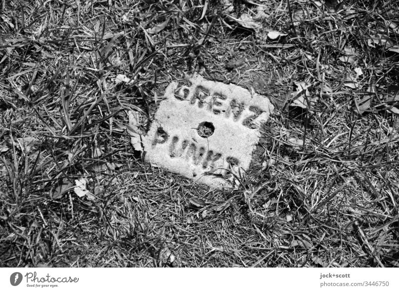 Border point right here in the grass Black & white photo Nature Meadow Exterior shot border point Stone Geometry Circle Signs and labeling Square