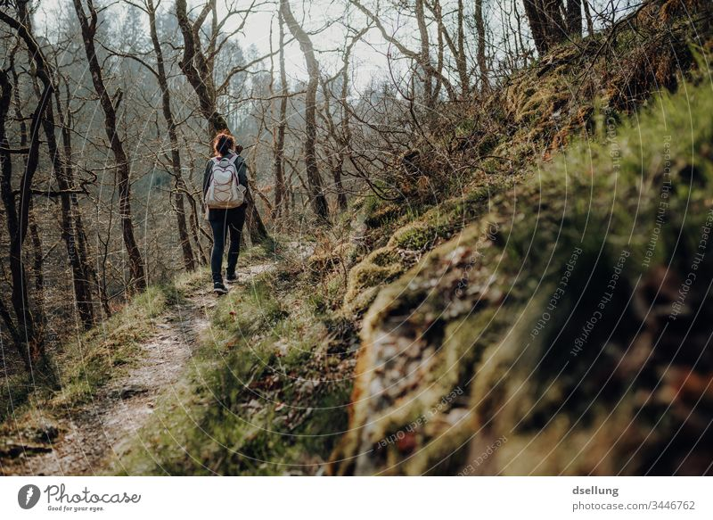 Young woman goes hiking in the forest Wellness Expedition Day Far-off places Camping Harmonious Going Shadow on one's own Well-being Target path Contentment