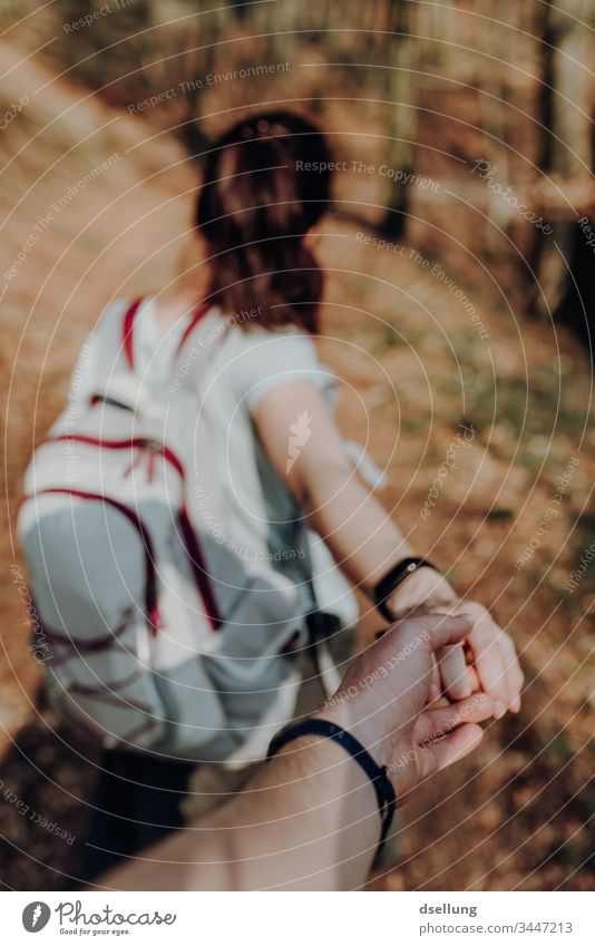 Young couple goes hiking in the forest and holds hands Wellness Expedition Day Far-off places Camping Harmonious Going Shadow on one's own Well-being Target