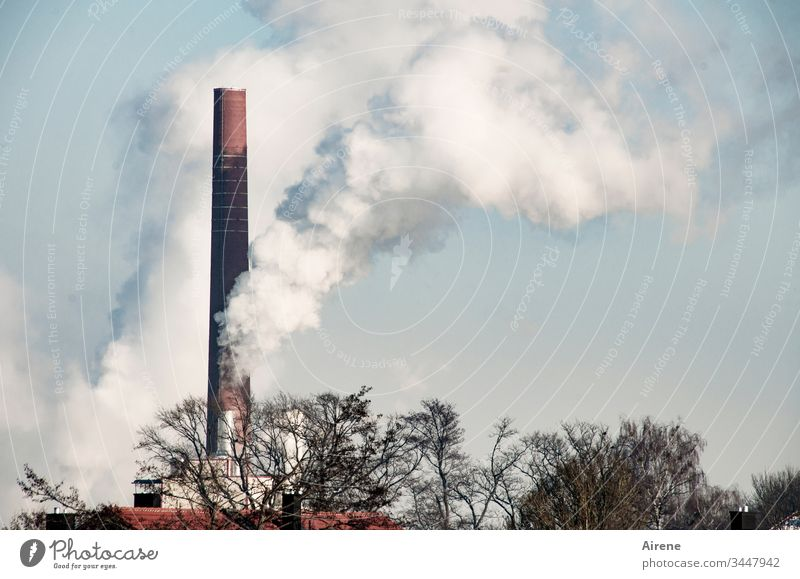 Climate change | Paper mill working at full speed Day Energy Environmental pollution Smoking Exhaust gas Smoke Chimney Deserted White Industrial plant