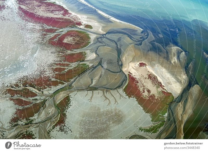 Play of colours, the desert from above Nature Colour photo daylight Bird's eye view Colours:blue tones Brown White purple Gray Green Deserted Rivers
