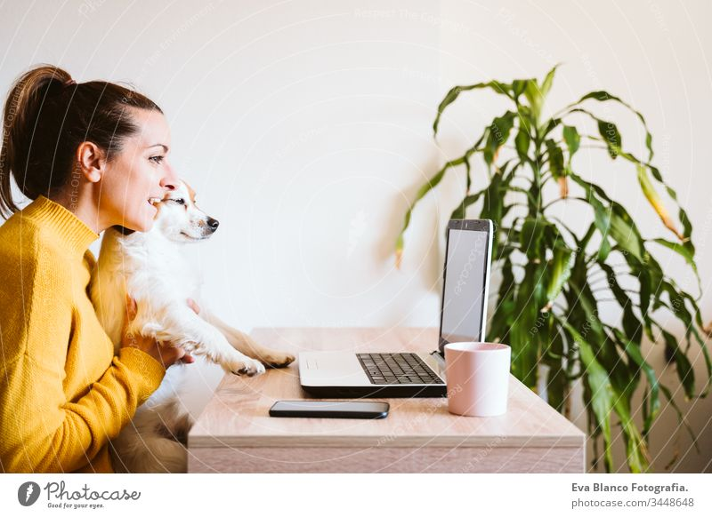 young woman working on laptop at home,cute small dog besides. work from home, stay safe during coronavirus covid-2019 concpt pet office work home mobile phone