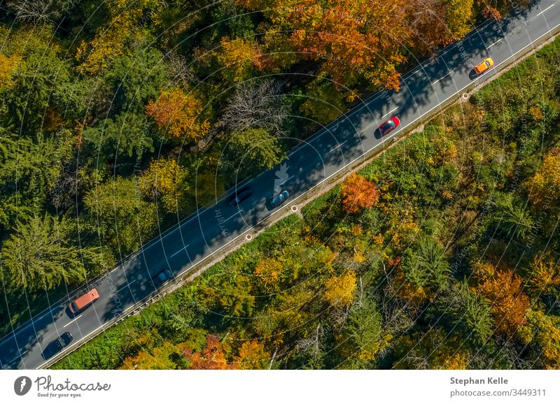 Vertical view from a drone at a autumn road with driving cars, birds eye perspective. traffic speed aerial fall sun nature landscape awesome diagonal line