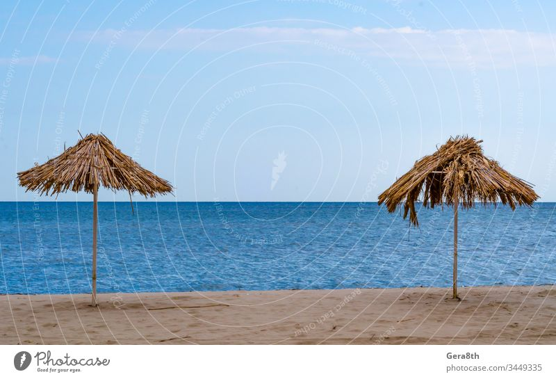 two straw beach umbrellas on an empty seashore on a clear day abandoned autumn bank blue broken cane clouds coast coastline damaged deserted frail halm haulm