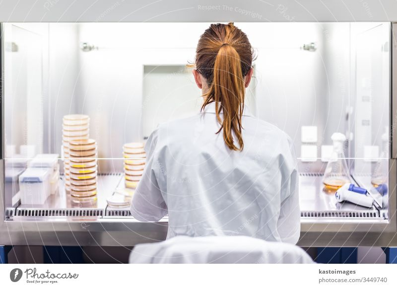 Female scientist working in corona virus vaccine development laboratory research facility. science biotechnology COVID-19 cvid pharmacy researcher analysis