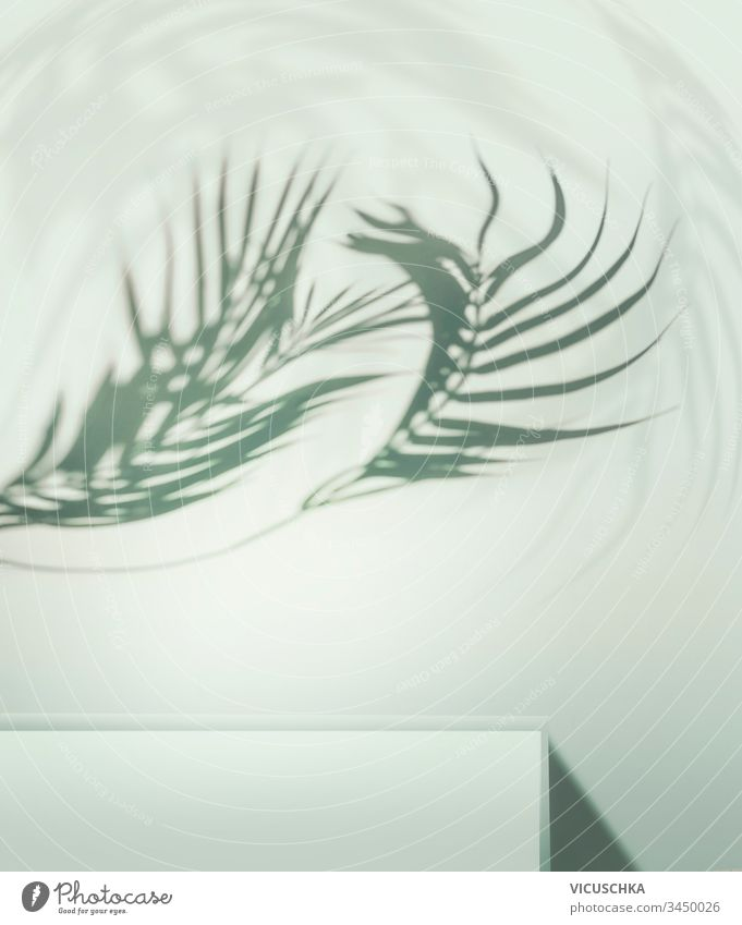 Curved tropical palm leaves shadow about podium or shelf at light blue background. Place for your product curved