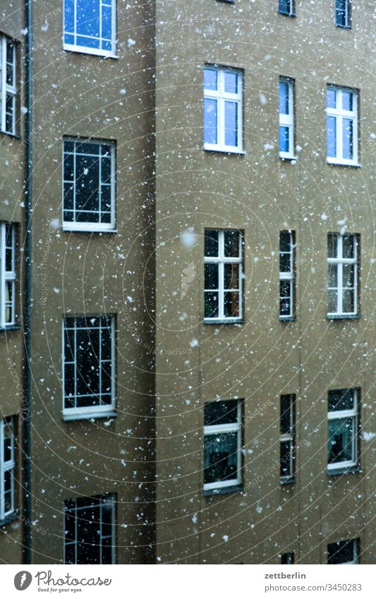 Snowfall in the backyard Old building on the outside Facade Window House (Residential Structure) rear building Backyard Courtyard Interior courtyard downtown