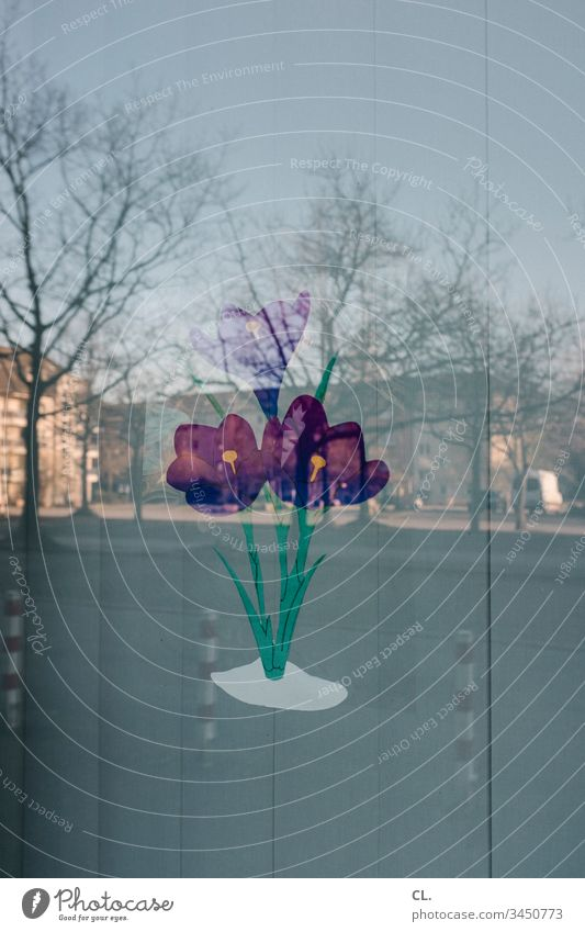 painted tulips on a windowpane Flower Window Tulip Window pane reflection Screening Disk Slat blinds Street Colour photo Deserted Day Exterior shot