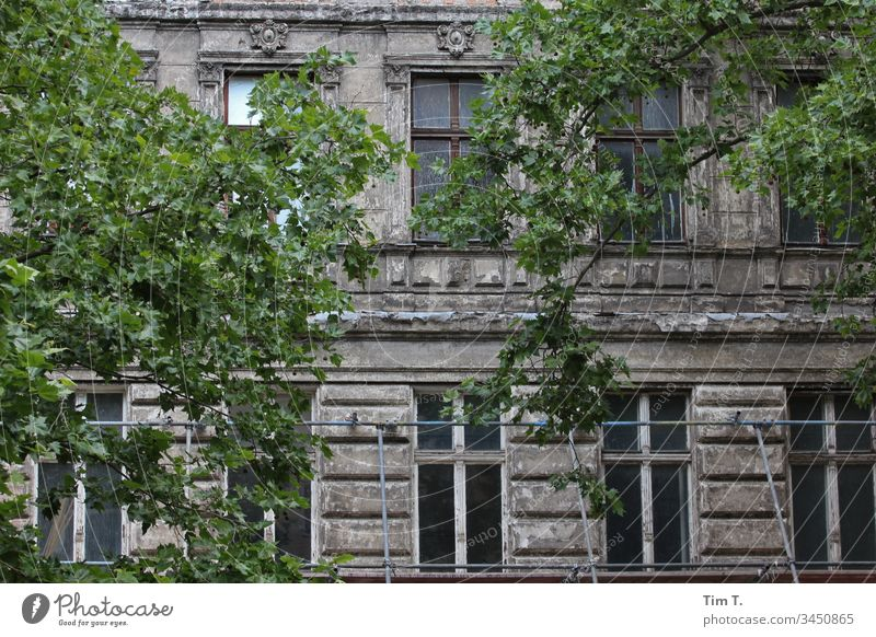 Prenzlauer Berg Berlin Facade Old building Oderberger Street House (Residential Structure) Window Town Deserted Downtown Living or residing Wall (building)