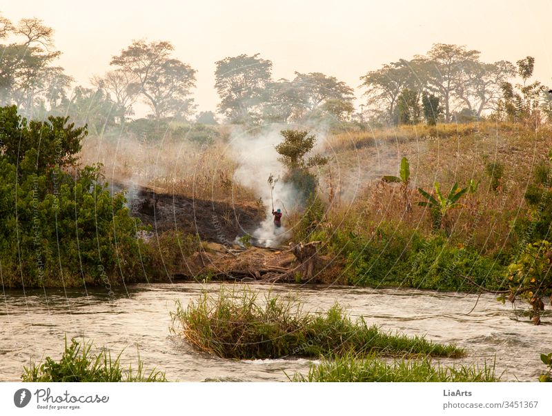 Bush fire in Uganda at the Nile, Africa nile river burning Africans River Fire sunset Sunset River bank Landscape Nature